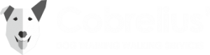 Cobrelius_logo_site_white